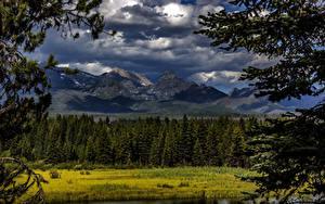 Фото Канада Парк Гора Леса Облака Glacier National Park Montana Природа