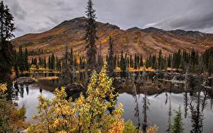 Фото Канада Парк Гора Озеро Осенние Банф Ели