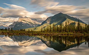 Обои для рабочего стола Канада Парк Горы Озеро Банф Мхом Ели Природа
