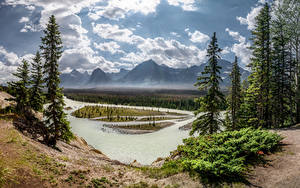 Картинка Канада Парки Гора Реки Пейзаж Деревья Облачно Jasper National Park, Alberta Природа