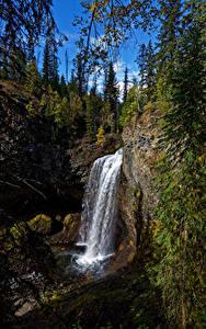 Фотография Канада Парки Водопады Камни Дерева Скалы Wells Gray Park, Moul Falls
