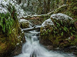 Фото Канада Парки Водопады Снег Мох Ручей Vancouver Island Parks Природа