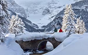 Обои для рабочего стола Канада Парк Зима Мосты Горы Банф Снегу Деревьев Alberta, Lake Louise Природа