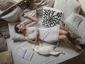 Обои для рабочего стола Коты Спит Лежит Кровать Подушка Платья David Dubnitskiy девушка