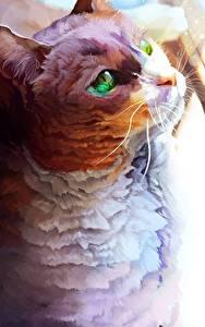 Фотография Коты Рисованные животное