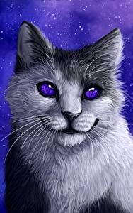 Картинка Коты Рисованные Усы Вибриссы Смотрит