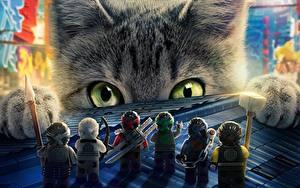 Картинки Кошка Ниндзя Взгляд The Lego Ninjago
