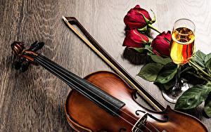 Картинки Игристое вино Розы Скрипки Бокалы Пища Цветы
