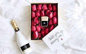 Обои Игристое вино Розы Бутылка Коробка Кольцо Английский will you marry me? Цветы