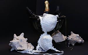 Обои Шампанское Ракушки На черном фоне Лифчика