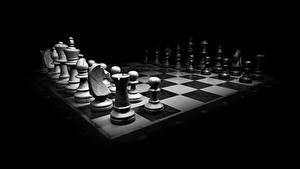 Картинки Шахматы Черный фон Черно белые компьютерная игра