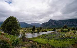 Картинки Чили Горы Речка Пейзаж Облака Дерево Patagonia