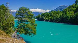 Обои Чили Реки Горы Деревья Patagonia Природа