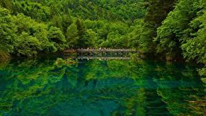 Картинки Китай Озеро Мосты Леса Цзючжайгоу парк Sichuan