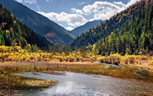 Фотография Китай Озеро Горы Парк Лес Пейзаж Цзючжайгоу парк Valley