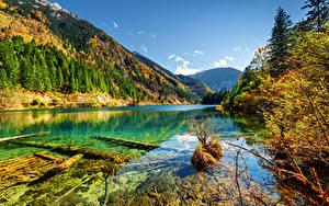 Картинка Китай Парки Гора Леса Осенние Пейзаж Цзючжайгоу парк Valley Природа