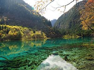 Картинка Китай Парк Гора Лес Осенние Озеро Цзючжайгоу парк Sichuan