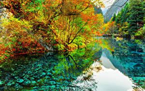 Картинка Китай Парк Река Осенние Цзючжайгоу парк Деревья Valley