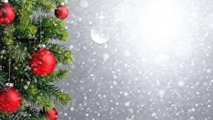 Картинка Рождество Шар Ветвь Шаблон поздравительной открытки