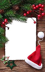 Фотография Новый год Ягоды Ветки Звездочки В шапке Шаблон поздравительной открытки