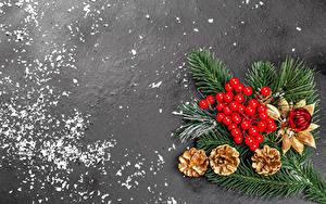 Фотографии Рождество Ягоды Сером фоне Ветки Шишки Шарики