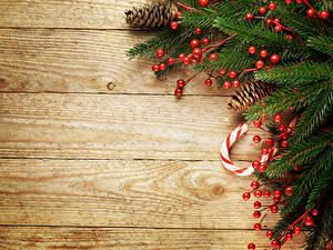 Фото Новый год Ягоды Доски Ветки Шишки Шаблон поздравительной открытки