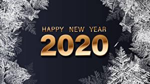 Фотография Новый год Черный фон Английский 2020 Снежинки Слово - Надпись