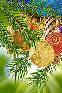 Фотография Новый год Ветки Шарики
