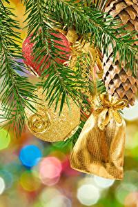 Фотографии Рождество Ветки Шар Шишки