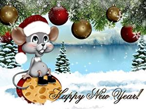 Фотографии Новый год Сыры Мыши Векторная графика Шарики Шапки Сидит