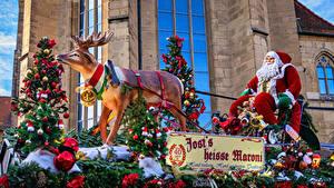 Фотографии Новый год Олени Слово - Надпись Дед Мороз Елка Колокольчик
