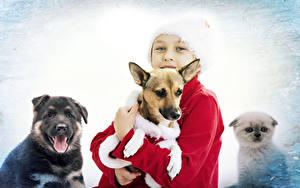 Фотография Новый год Собаки Мальчики Взгляд Дети Животные