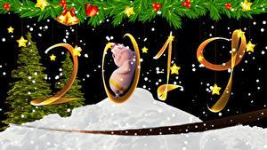 Картинки Рождество Домашняя свинья Черный фон 2019 Елка Колокольчики Звездочки