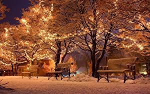 Фотография Новый год Праздники Зима Парки Скамейка Снег Деревьев Гирлянда Ночью Природа Города