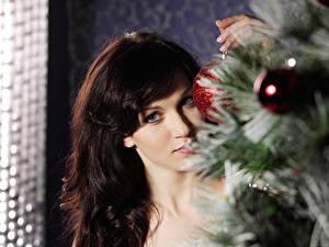 Картинка Рождество Праздники Взгляд Волосы Красивые Девушки