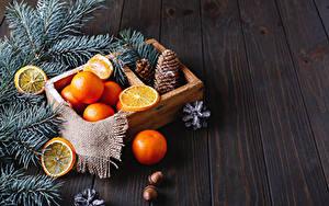 Обои Рождество Мандарины Доски Ветвь Шишка Пища