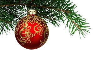 Фотографии Рождество Белым фоном Шар Ветвь