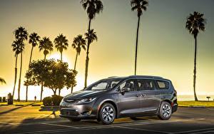 Фото Chrysler Серый Пальма Гибридный автомобиль 2017 Pacifica Hybrid Автомобили