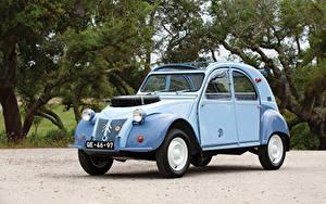 Фото Citroen Винтаж Голубые Металлик 1960-71 2CV 4×4 Sahara авто