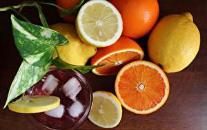 Фотография Цитрусовые Напиток Лимоны Апельсин