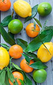 Фото Цитрусовые Лимоны Лайм Мандарины Доски Листья Пища