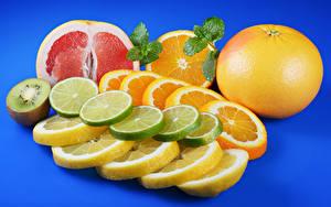 Обои Цитрусовые Апельсин Лимоны Грейпфрут Киви Цветной фон Нарезка Еда
