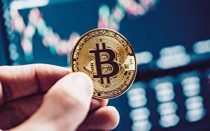 Фотография Вблизи Пальцы Монеты Деньги Bitcoin Размытый фон