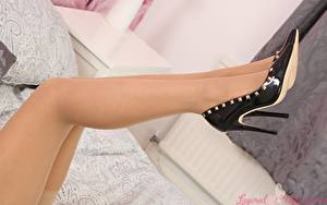 Фото Крупным планом Ноги Туфлях Колготках Девушки