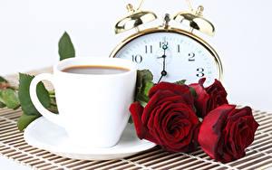 Фото Кофе Розы Часы Белый фон Чашка Красный Цветы Еда