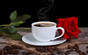 Фотографии Кофе Розы Зерна Еда Цветы