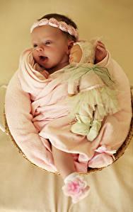 Фотографии Цветной фон Младенцы Кукла Радостный