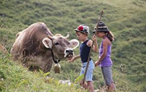 Фото Коровы Траве Альпы Мальчики Девочка Шляпа Дети