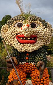 Фотография Оригинальные Тыква Германия Старый мужчина Ludwigsburg Pumpkin Festival
