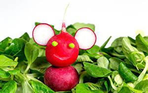 Фотографии Креатив Овощи Редис Белый фон Еда